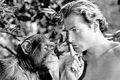 Se cuestiona la ética de usar primates en la industria del cine
