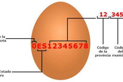 ¿Sabes la información que esconde los números impresos en los huevos?