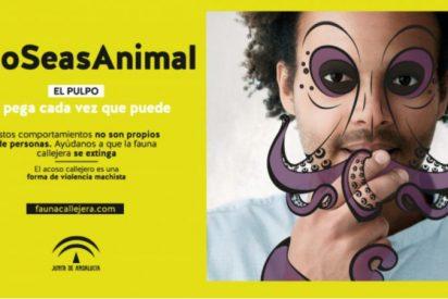 """La campaña de la Junta andaluza que califica de """"cerdos"""" a los hombres que lanzan piropos"""
