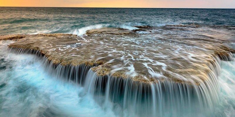 ¿Sabes qué son las zonas muertas del océano y por qué cada vez hay más?