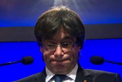 El prófugo Puigdemont jura la Constitución española con tal de ser 'tele-investido'
