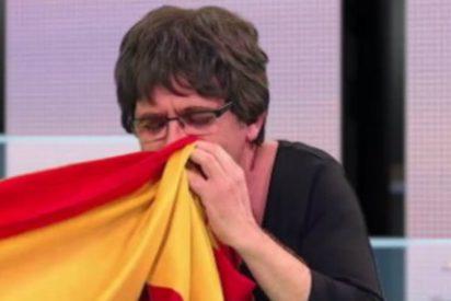 Un bufón de 'Polònia' se suena los mocos con la bandera española en TV3