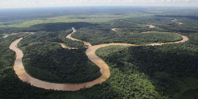La carretera del Gobierno de Bolivía que 'matará' un santuario natural irremplazable