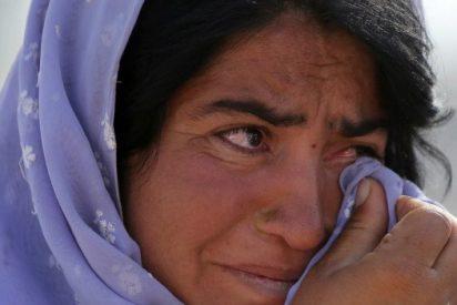 """El Papa denuncia la """"inaceptable"""" persecución que sufren los yazidíes"""