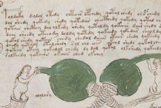 Descifran el enigma del misterioso manuscrito Voynich