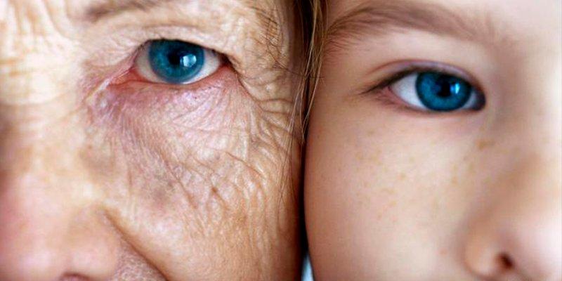 ¿Sabes por qué la sangre de los jóvenes ayuda a rejuvenecer al cerebro de los ancianos?