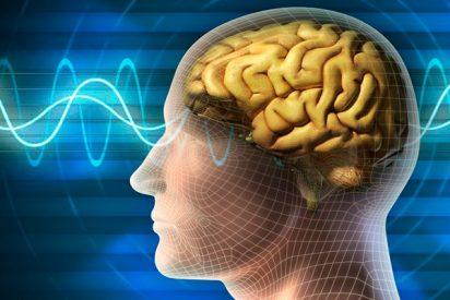 ¿Sabes qué consejos debes seguir para evitar que el alzhéimer llegue a tu vida?