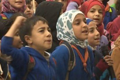 Así superan en Alepo la destrucción causada por la sangrienta guerra en Siria