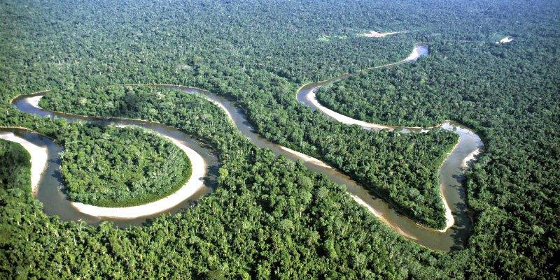 La fragmentación de los bosques tropicales conduce inexorablemente a su muerte