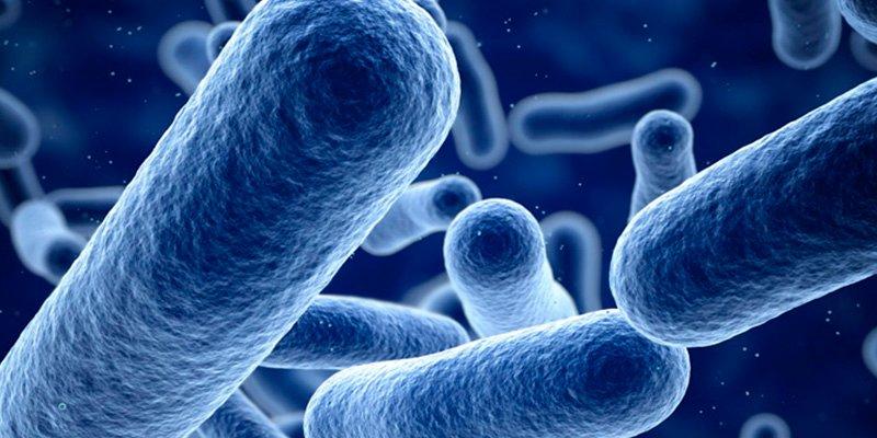 Un nuevo proyecto europeo analiza la sensibilidad de las bacterias multirresistentes en el H. Ramón y Cajal