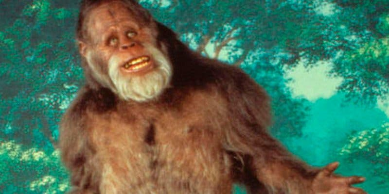 Por no querer considerar al Bigfoot como una especie el estado de California ha recibido una demanda