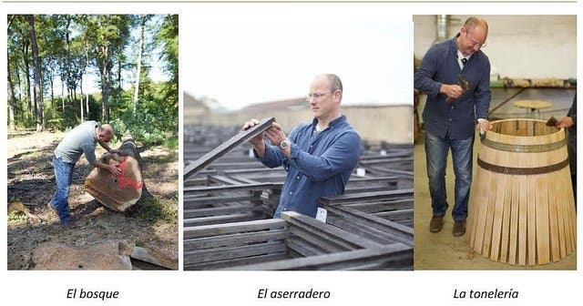 Bodegas Luis Alegre adquiere Robles Franceses de más de 200 años