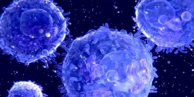 El deterioro del sistema inmune con la edad aumenta el riesgo de padecer cáncer