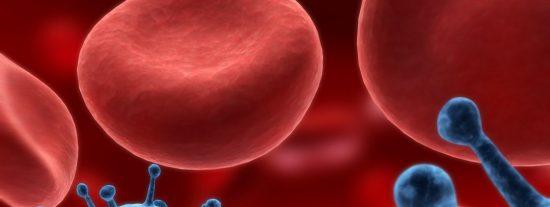 Diseñan una vacuna contra el cáncer que elimina tumores