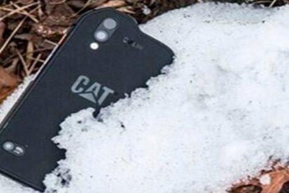 Así es el Cat S61, un super smartphone ultra resistente y con cámara térmica