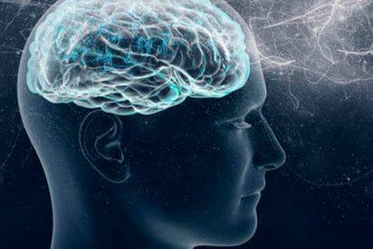 ¿Sabías que para nuestro cerebro lo normal no existe?