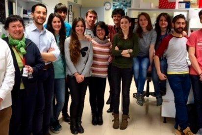 Investigadores del Idibell descubren nuevas claves sobre una proteína implicada en el cáncer de hígado