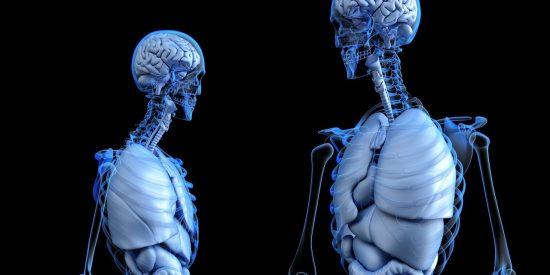 Longevidad y criopreservación: Estas personas creen que la muerte es algo temporal