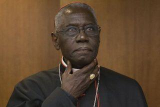 Cardenal Sarah: 'Decir que estoy en contra del papa es estúpido'