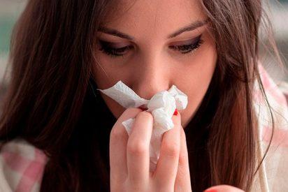 Ya hay más de 500 muertos por gripe en España