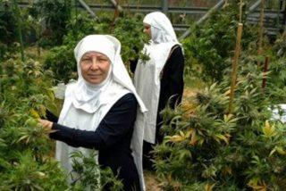 Así son las monjas falsas que facturan millones al año vendiendo marihuana por correo