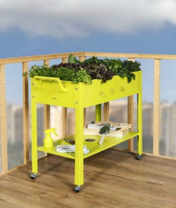 huertos urbanos y kits para cultivar