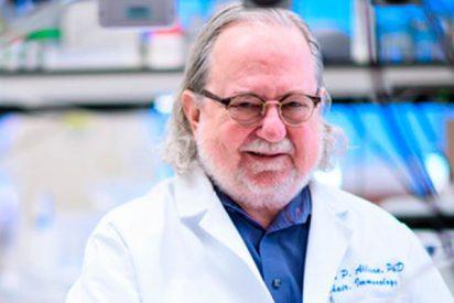 La primera inmunoterapia contra el cáncer, premio Fundación BBVA en Biomedicina