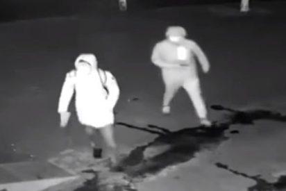 ¡Dos tontos muy tontos!: Este ladrón deja inconsciente de una pedrada a su compinche en pleno robo