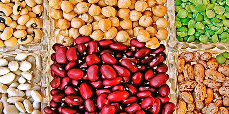 ¿Sabías que las legumbres minimizan el riesgo de mortalidad por cáncer?