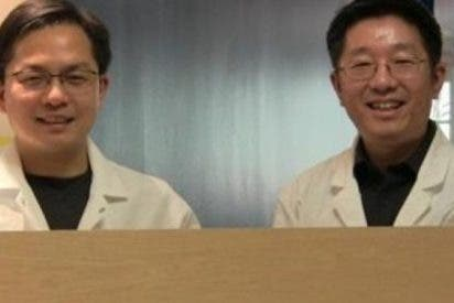 Ingenieros del UMD crean una supermadera tan resistente que puede sustituir al acero