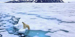 ¿Sabías que el Ártico se puede quedar sin hielo en septiembre si el planeta se calienta dos grados más?