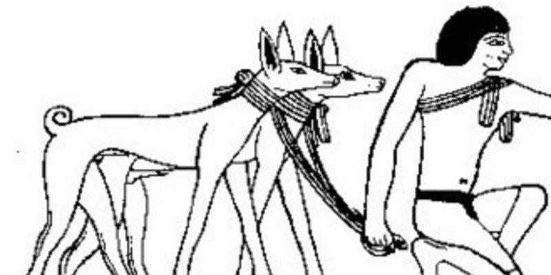 El vínculo emocional entre seres humanos y perros se remonta a hace 14.000 años