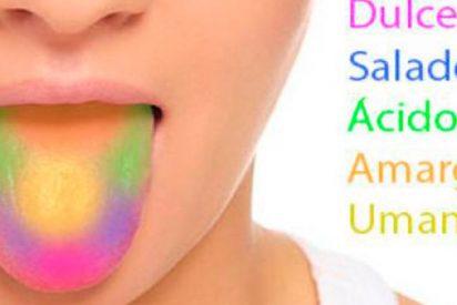 Descubren la zona de la amígdala cerebral implicada en el rechazo de sabores tóxicos