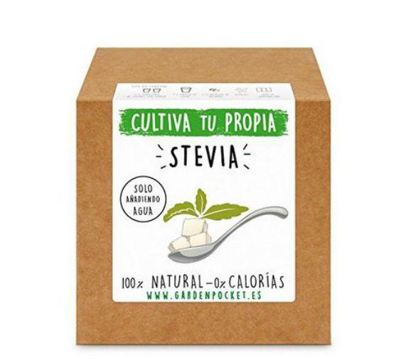 huertos urbanos y kits para cultivar stevia