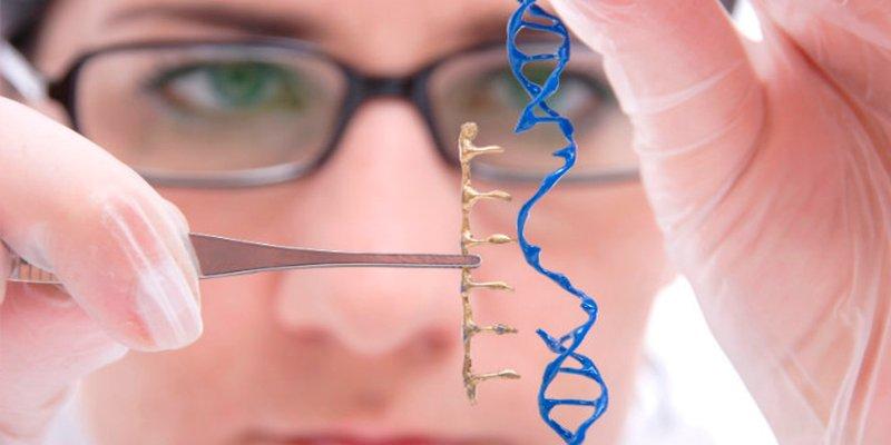 ¿Sabes que hay una terapia génica que logra normalizar la glucosa en ratones con diabetes tipo 1?