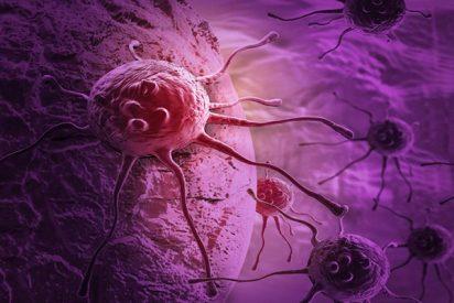 ¿Sabes que los mismos genes pueden activar el inicio de tumores y su metástasis?
