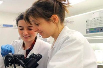 Así es el nuevo método que utiliza calor contra células cancerígenas