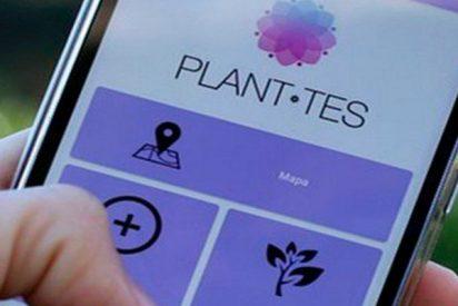 Esta 'app' alerta del riesgo de alergia en las diferentes calles de las ciudades