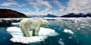 La ciencia demuestra que la evolución es más lenta que el calentamiento global