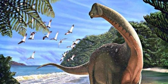 Cretácico: Las aves que vivieron con los dinosaurios ya volaban como las de ahora