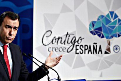 """Logos: El PP cambia la gaviota por una encina que es un """"árbol ibérico por excelencia"""""""
