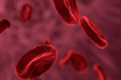 Así son las nuevas nanopartículas magnéticas que frenan hemorragias internas
