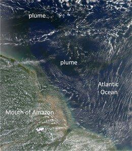 La radiación solar mineraliza el carbono orgánico disuelto terrestre en el océano