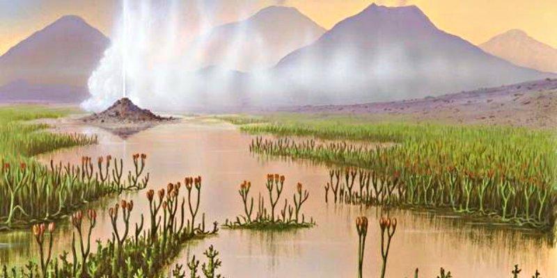 Las primeras plantas terrestres llevaron a la aparición del barro