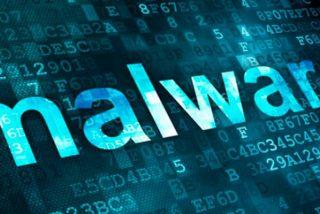 ¿Sabes qué es realmente un Malware?