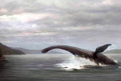 Aparece el cadáver de un 'monstruo del lago Ness' en EE.UU.