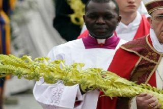 """El Papa, en el domingo de Ramos, invita a los jóvenes a gritar """"antes de que griten las piedras"""""""