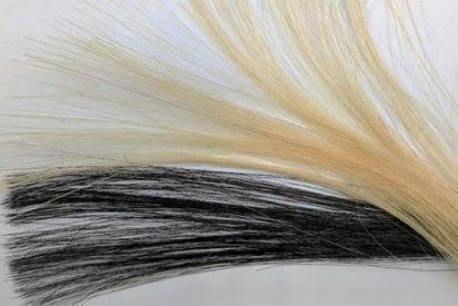 Un tinte duradero a base de grafeno que podrá 'electrizar' el pelo