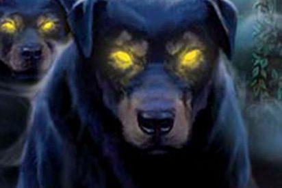 El perro siniestro que se columpia