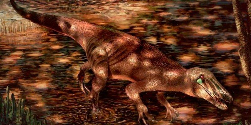 Descubierta una nueva especie de dinosaurio carnívoro gigantesco